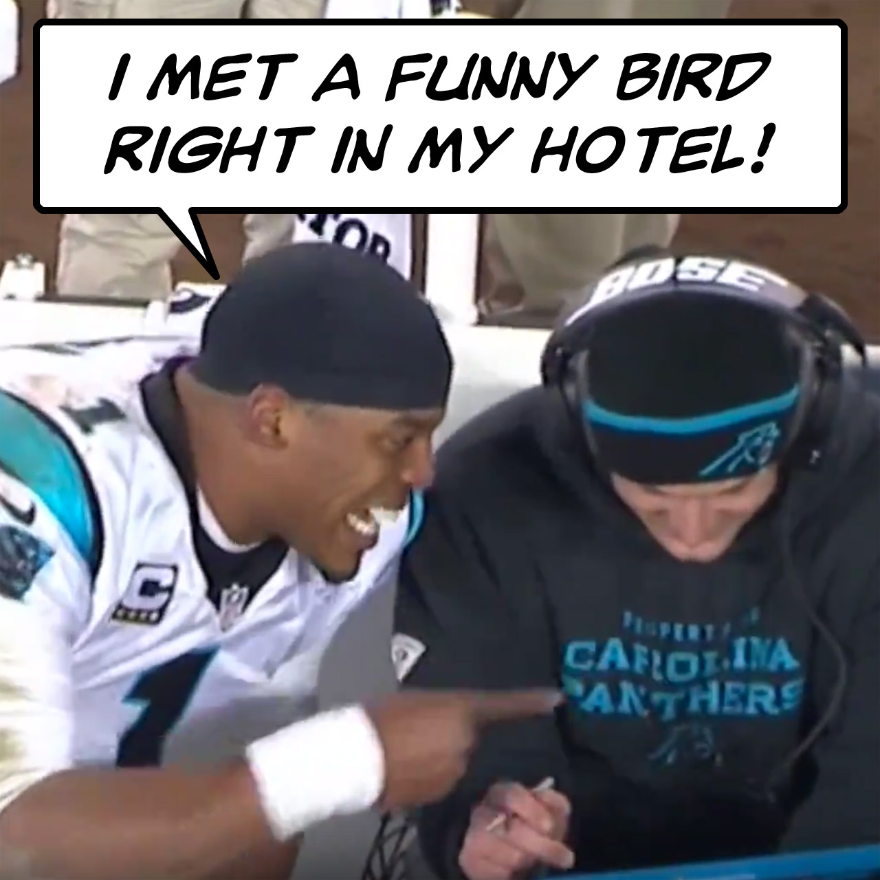 Bad lip reading: Cam Newton met a funny bird right in his hotel