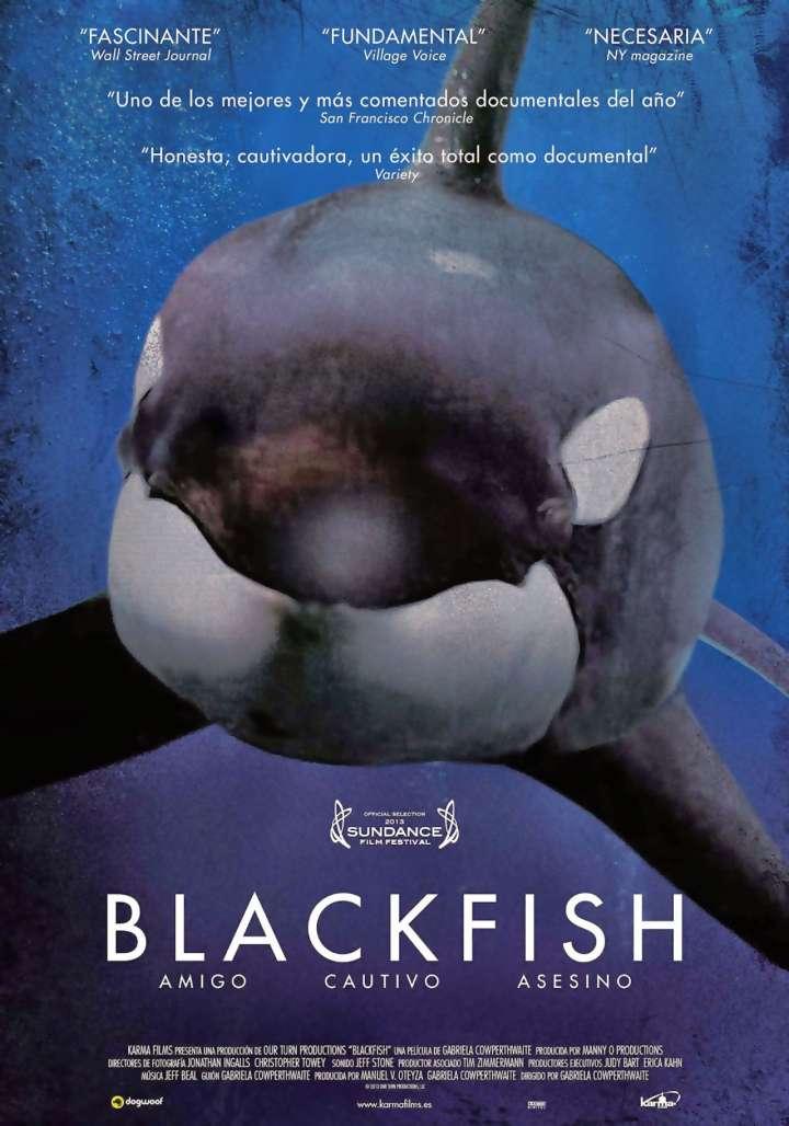 Blackfish movie poster