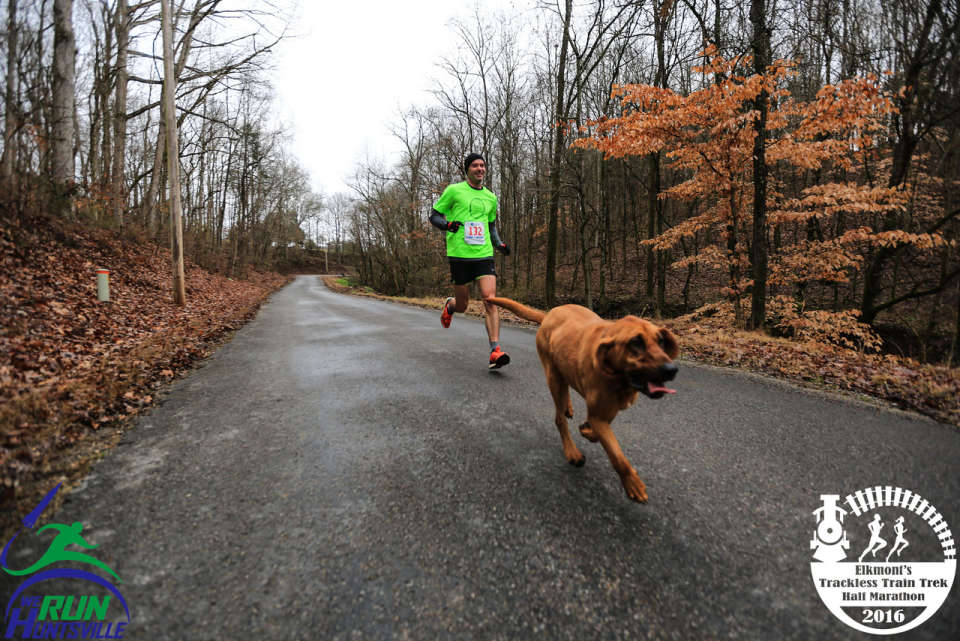 Bloodhound runs 2016 Elkmont Trackless Train Trek Half Marathon
