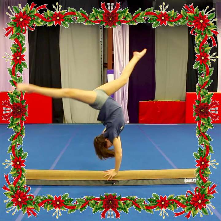 Gymnast gift idea: Low Beam by Resilite