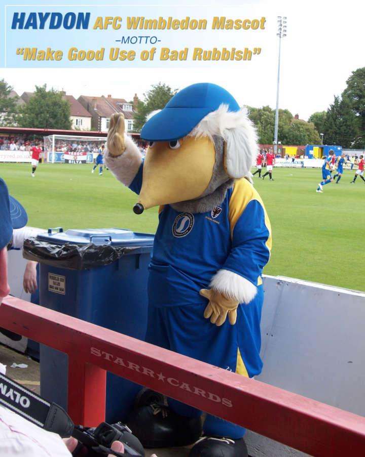 Haydon: Lovable Womble and AFC Wimbledon mascot