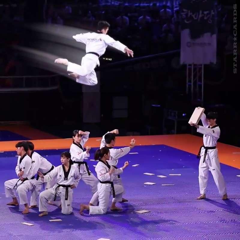 Kukkiwon Taekwondo Demonstration Team shows off high-flying punches and kicks