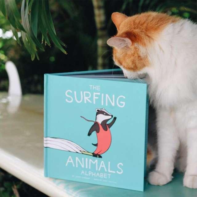 Kuli the Surfing Cat reads 'The Surfing Animals Alphabet'
