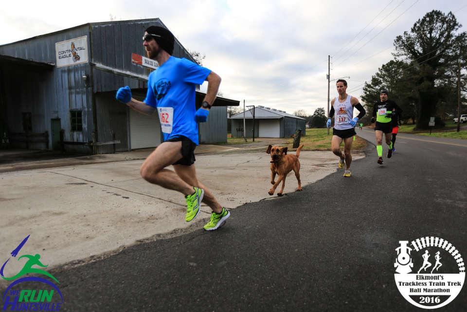 Ludivine runs 2016 Elkmont Trackless Train Trek Half Marathon