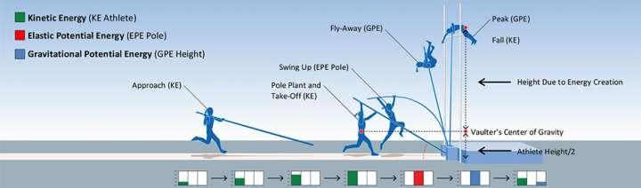 Pole vault diagram showing conversion of energy