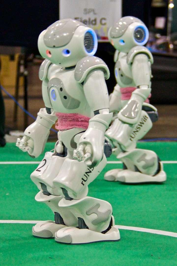 RoboCup soccer robots