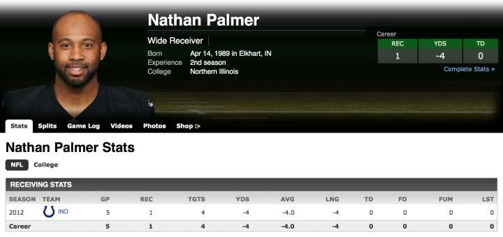 Wide receiver Nathan Palmer NFL stats from ESPN