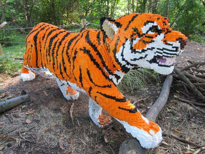 Zoo tiger made from LEGO bricks